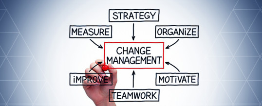 Organizational Change – is it all too much?